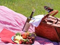 A Picnic Basket Full of Recipes