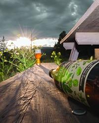 Beer Bottle Beauty