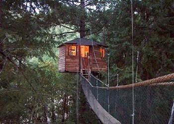 Go Here: Treehouse Resorts