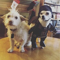 The Source Weekly - Pet Costume Contest!