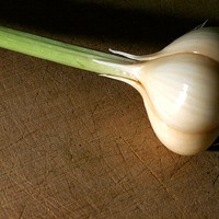 The Garlic Equation