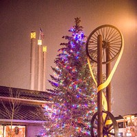 Timber! Holiday Tree Options Abound in Central Oregon