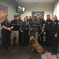 Stolen Dog Reunited