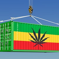"Marijuana: Let ""Oversupply"" Become ""Export"""