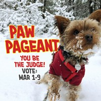 2019 Paw Pageant —Vote!