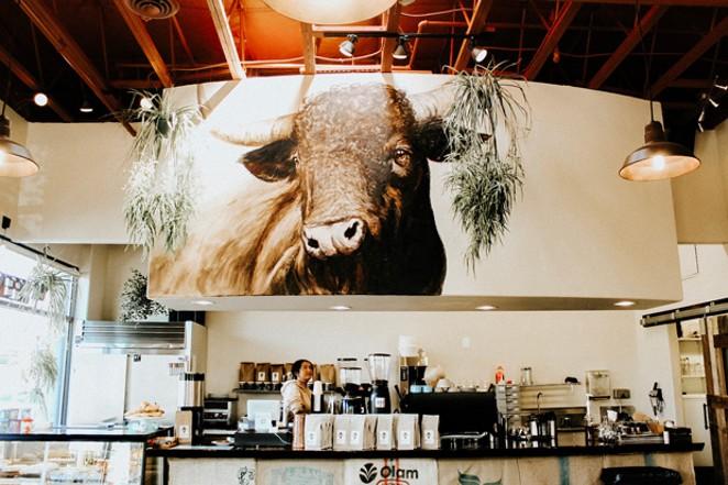 The coffee shop's long-standing mascot, Loui. - NANCY PATTERSON
