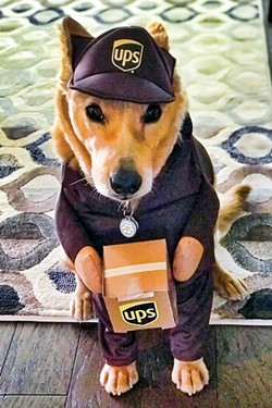 Honorable mention: Whiskey as a UPS Driver. - SUBMITTED