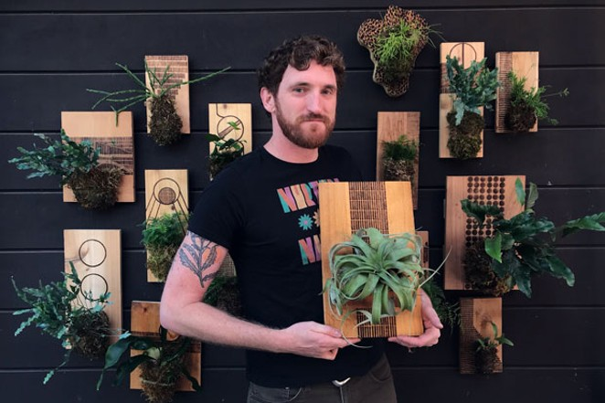 James Gray and his mounted houseplants. - CAITLIN JARVIS