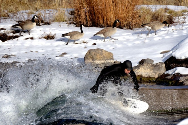 """Just passing through, thanks!"" These geese couldn't care less about the wave-riding going on at Bend's Whitewater Park Sunday. Cheers to local Charles Blumenthal for sending in this snap. - CHARLES BLUMENTHAL"