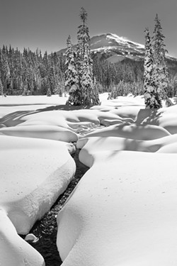 Poet Katrina Hays, whose poem is seen above, collaborated on the work with her husband, photographer Steven McBurnett, with McBurnett shooting this photo of Todd Creek. - STEVEN MCBURNETT