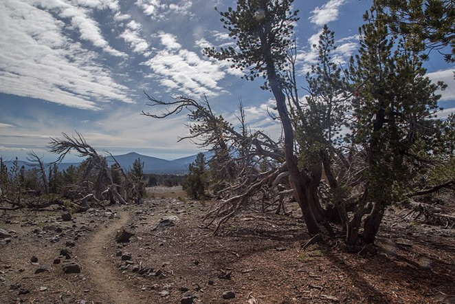 Tam McArthur Rim Trail to Broken Top, at Three Creeks Lake near Sisters. - MARK GORZYNSKI, WIKIMEDIA