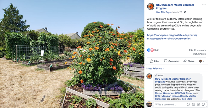 Novice gardeners across the U.S. signed up for OSU's free introduction to vegetable gardening course. The course is still open and free for new signups. - OSU MASTER GARDENER PROGRAM VIA FACEBOOK