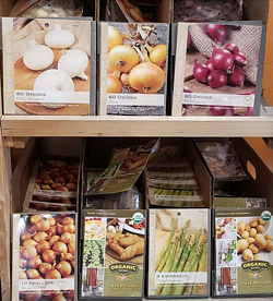 Moonfire and Sun Garden Center is selling out of vegetable seeds, starts and bulbs. It is considered an essential business and has been offering curbside pick-up and home deliveries since the pandemic lockdowns began. - MOONFIRE AND SUN GARDEN CENTER