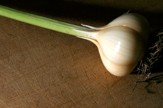 Garlic in the ground now is the next best thing to garlic in your tummy. - ARI LEVAUX