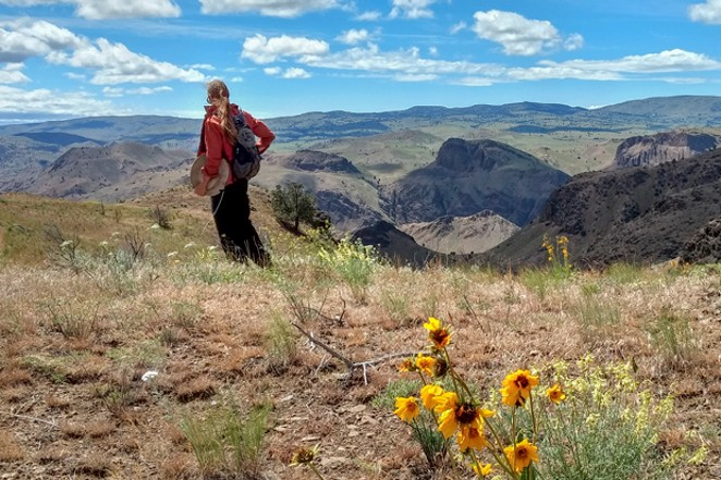Monitoring in the Spring Basin Wilderness in Eastern Oregon. - MARK DARNELL