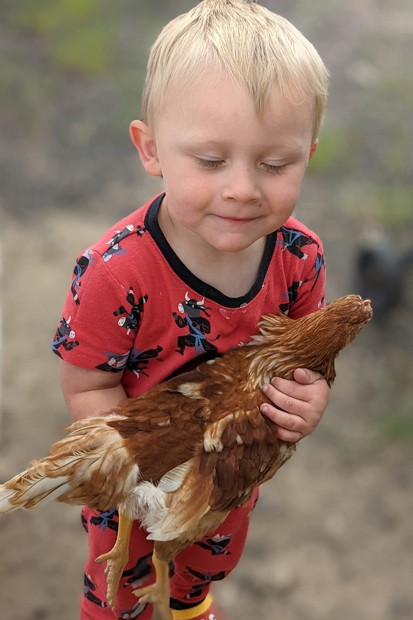 A family member of Susan Sapp holds Tiny, the red hen. - SUBMITTED