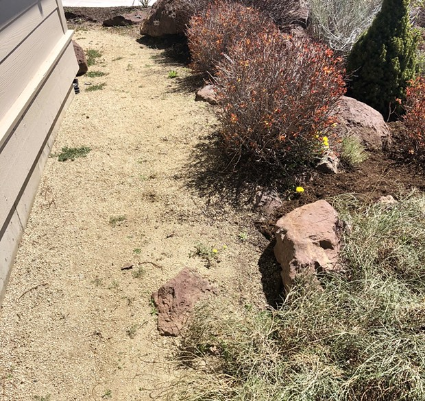 New bark mulch separated from the house with non-combustible decorative gravel. - BEND FIRE DEPARTMENT