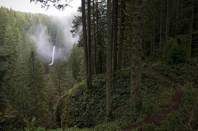 Visitors to Silver Falls State Park may see light smoke due to the fire there, officials say. - WIKIMEDIA