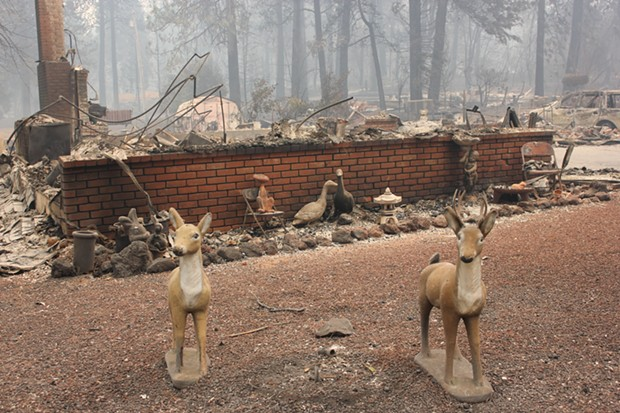 A fireplace and lawn ornaments are the surviving remnants of a home burned in Paradise, Calif. - MELISSA DAUGHERTY, CHICO NEWS & REVIEW
