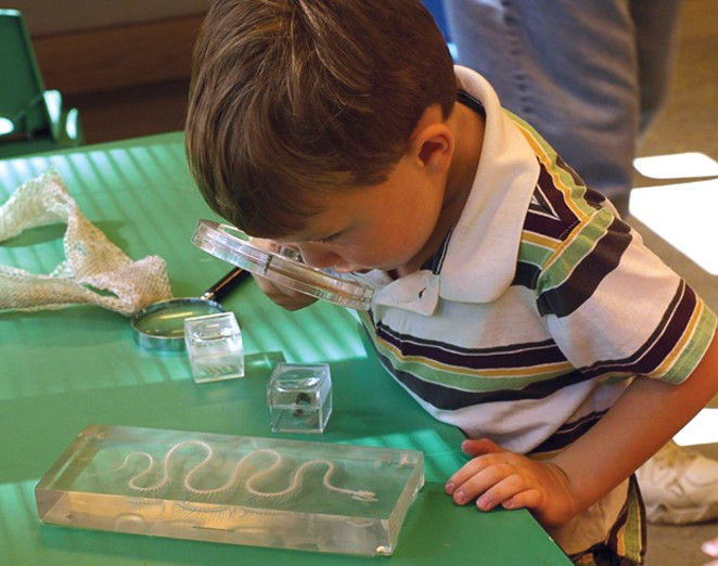 Backpack Explorers at the High Desert Museum. - SUBMITTED