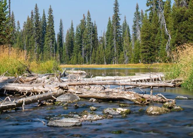 One source of drinking water in Bend is the Deschutes Regional aquifer. - BEN MCLEOD