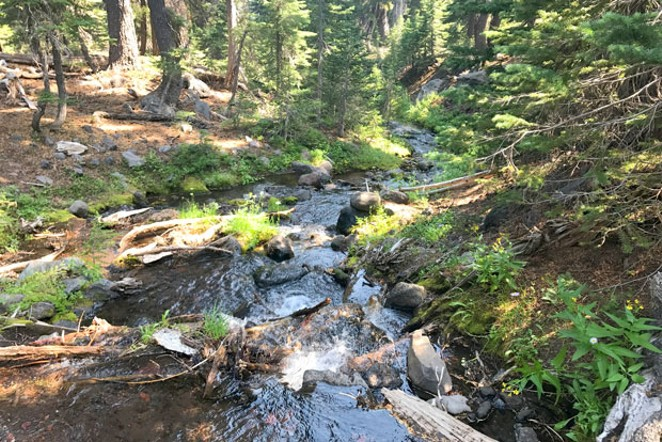 The Natural Resources Management Act included an official name change for Central Oregon's Wild and Scenic Whychus Creek, formerly known as Squaw Creek. - ZACHARY COLLIER, FLICKR