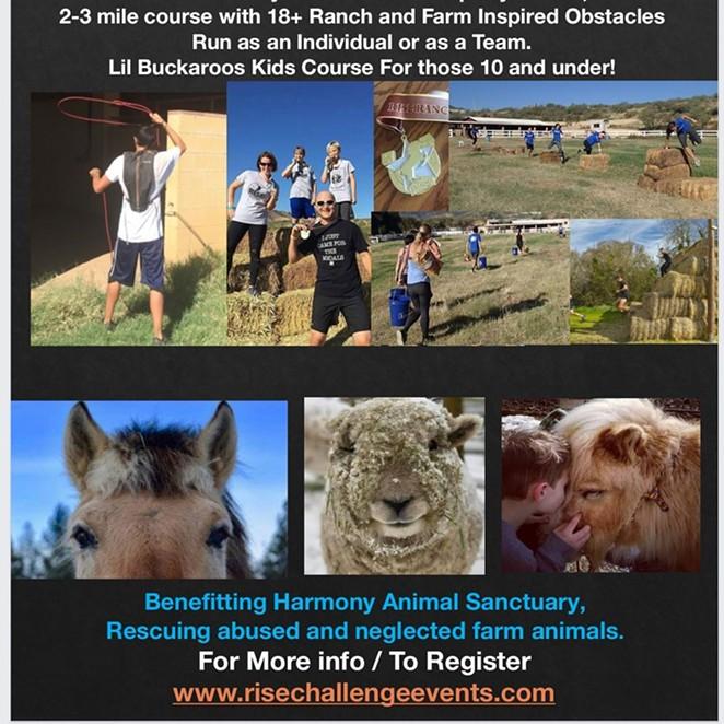 RISE Ranch Challenge