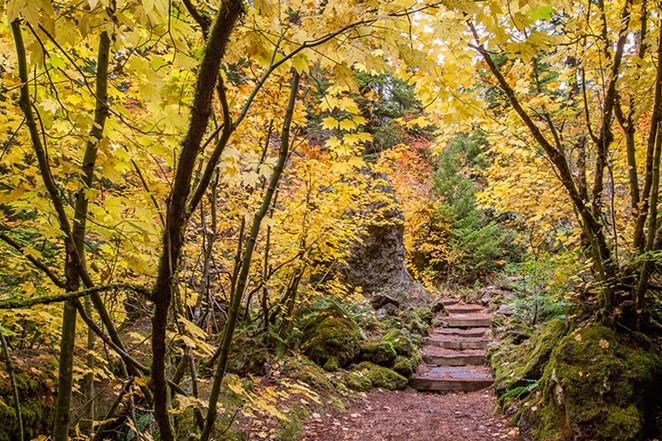 BPT - Fall Foliage Photo Workshop