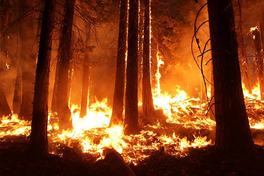 Officials say a combination of factors this year mean it will be especially important for locals to do their part to prevent the spread of wildfire around their homes. - PIXABAY