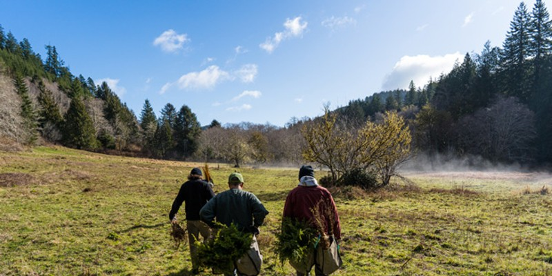 By garnering donations from the public, Project Appleseed aims to plant 2 million trees—double its initial goal.