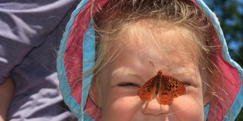 A butterfly on the nose always adds fun to outdoor adventures.