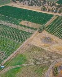 KLL Farms, 14 acres, Redmond