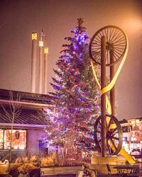 Seeking some holiday feels? Soon the Tree of Joy will illuminate the Old Mill.