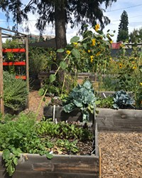 Part of the The Environmental Center's Kansas Avenue Learning Garden.