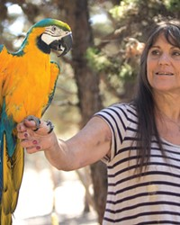 Linda Rose Forney and her pet macaw, Cosmo.