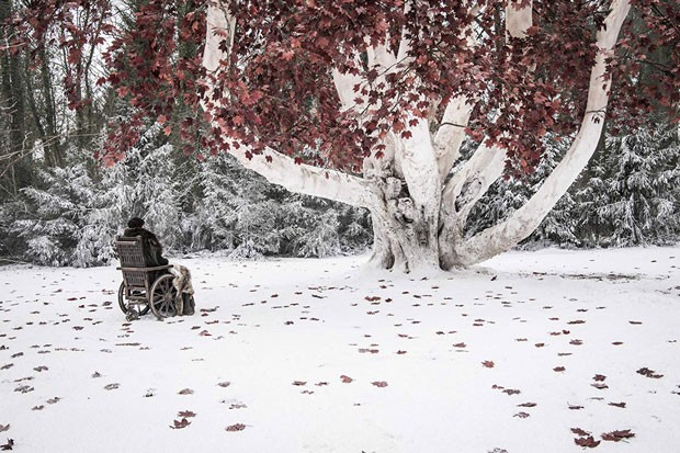 Bran and the Godswood: together again at last. - COURTESY HBO