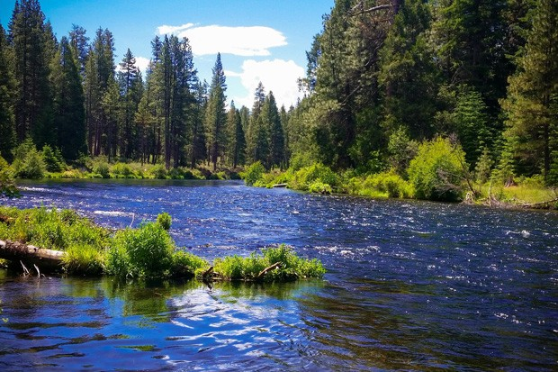 A U.S. Forest Service photo shows the Metolius River at the Deschutes National Forest that the agency manages. - U.S. FOREST SERVICE