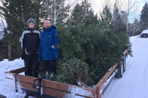 It's nearly time to toss that tree near the curb and let someone else pick it up! Scouts from area Boy Scouts troops will pick up trees in Bend, La Pine, Redmond, Sisters and Sunriver on Jan. 2, 3 and 9, as a fundraiser for the troops. Visit takeyourtree.com to reserve a pickup and get more info. - PHOTO COURTESY SCOUT TROOP 25, BEND