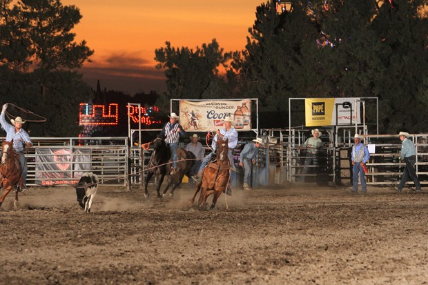 Calling all cowboys! The Northwest Pro Rodeo rides back into the arena July 28. - COURTESY DESCHUTES COUNTY FAIR
