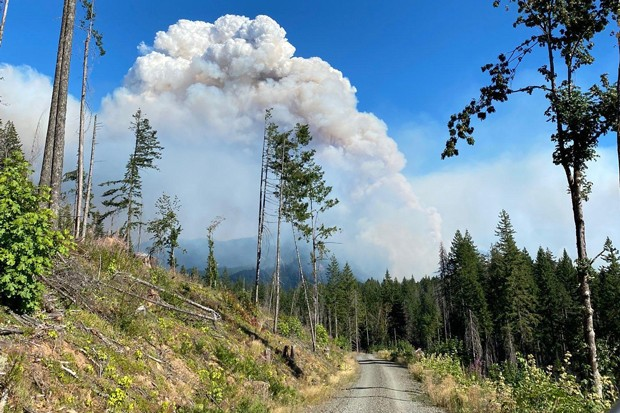 A plume of smoke rises over the Middle Fork Complex Fire in the Willamette National Forest. - COURTESY INCIWEB