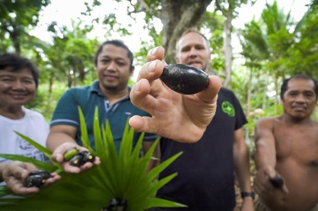 Jason Thomas forages the nut the way meant to melt the hearts of keto-dieters everywhere. - COURTESY JASON THOMAS