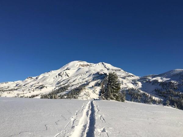 Fresh snow! Follow @rexshepard on Instagram.