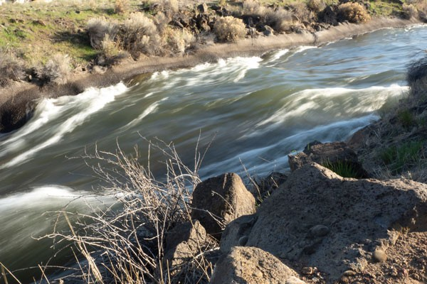 Water races through the Central Oregon Canal near Canal Row Park in Bend. - CHRIS MILLER