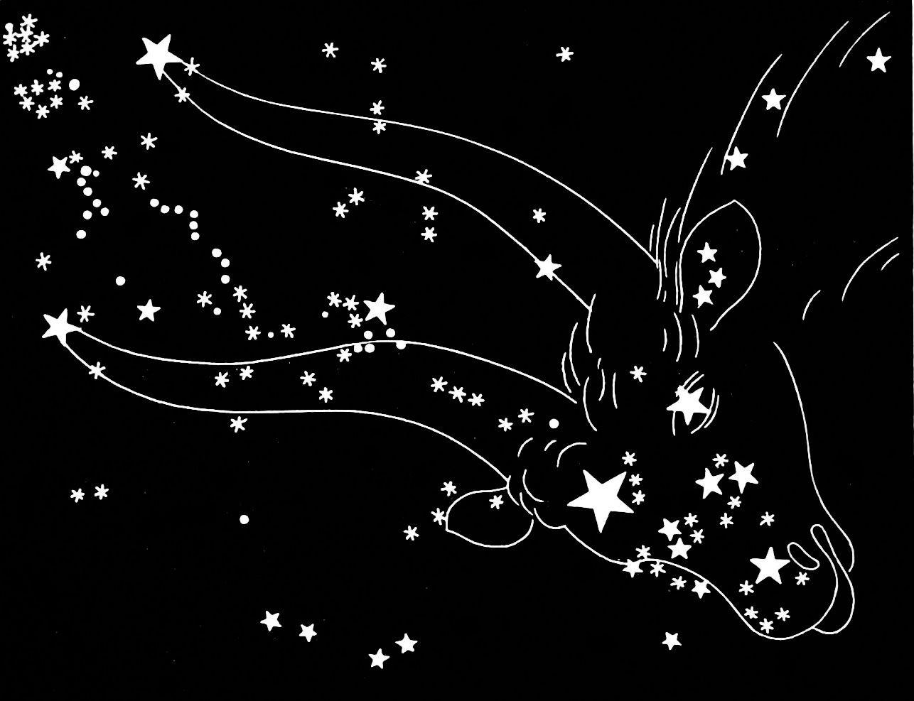 freewill astrology taurus