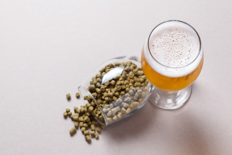 A pale ale with a glass of hops. - CANSTOCKPHOTO.COM