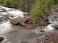 Nominate a river for Wild and Scenic designation