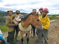 Rescuing Animals Out of the Ashes