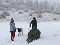 Sharpen Your Saw! It's Christmas Tree Huntin' Time
