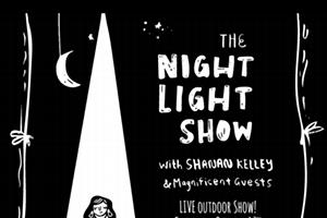 The Night Light Show