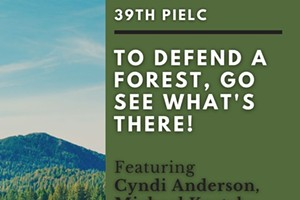 To Defend A Forest, Go See What's There!